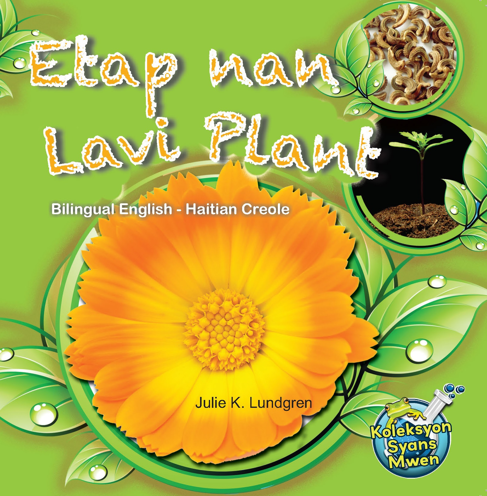 Etap nan Lavi Plant