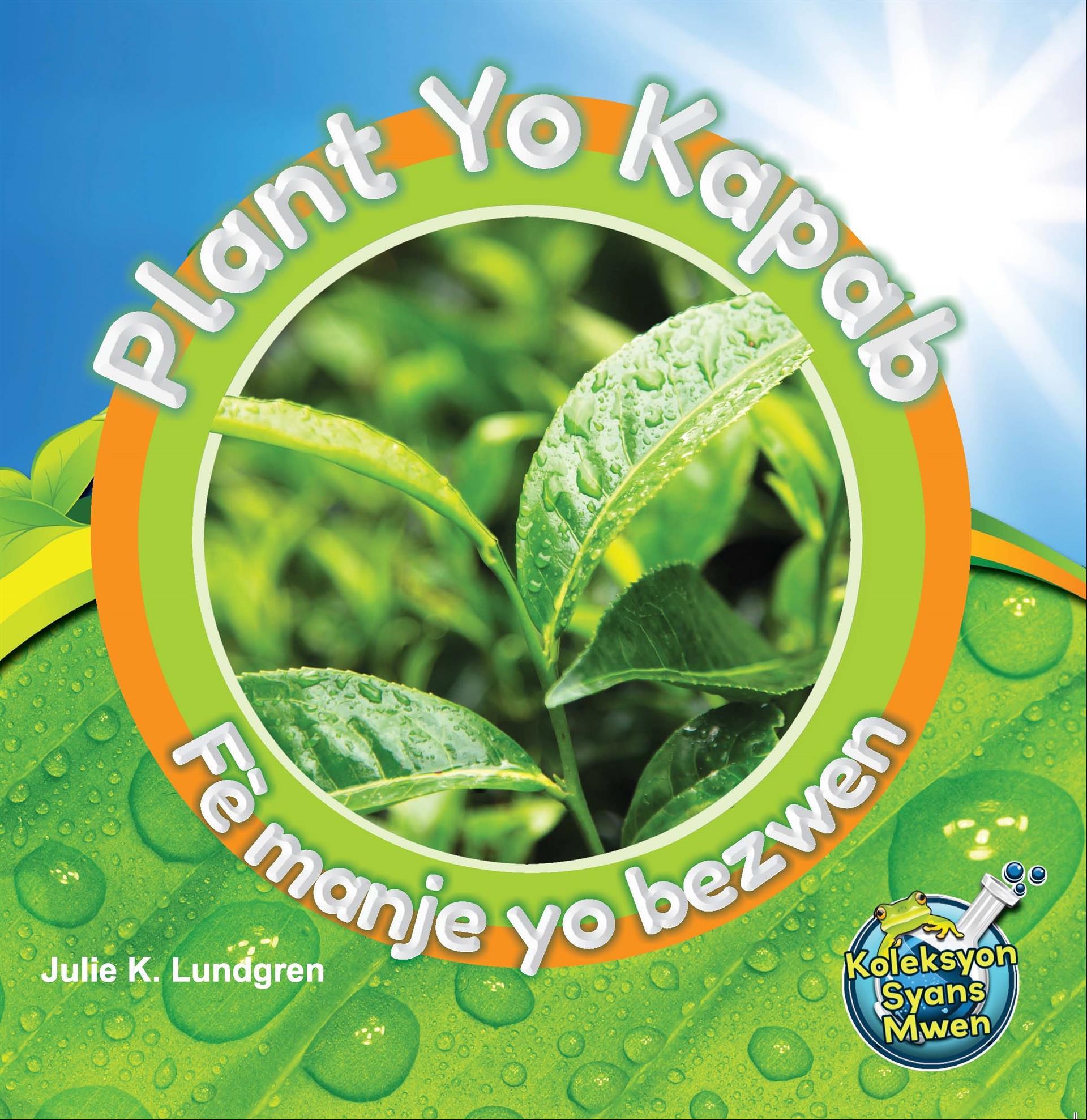 Plant Yo Kapab Fè Manje Yo Bezwen