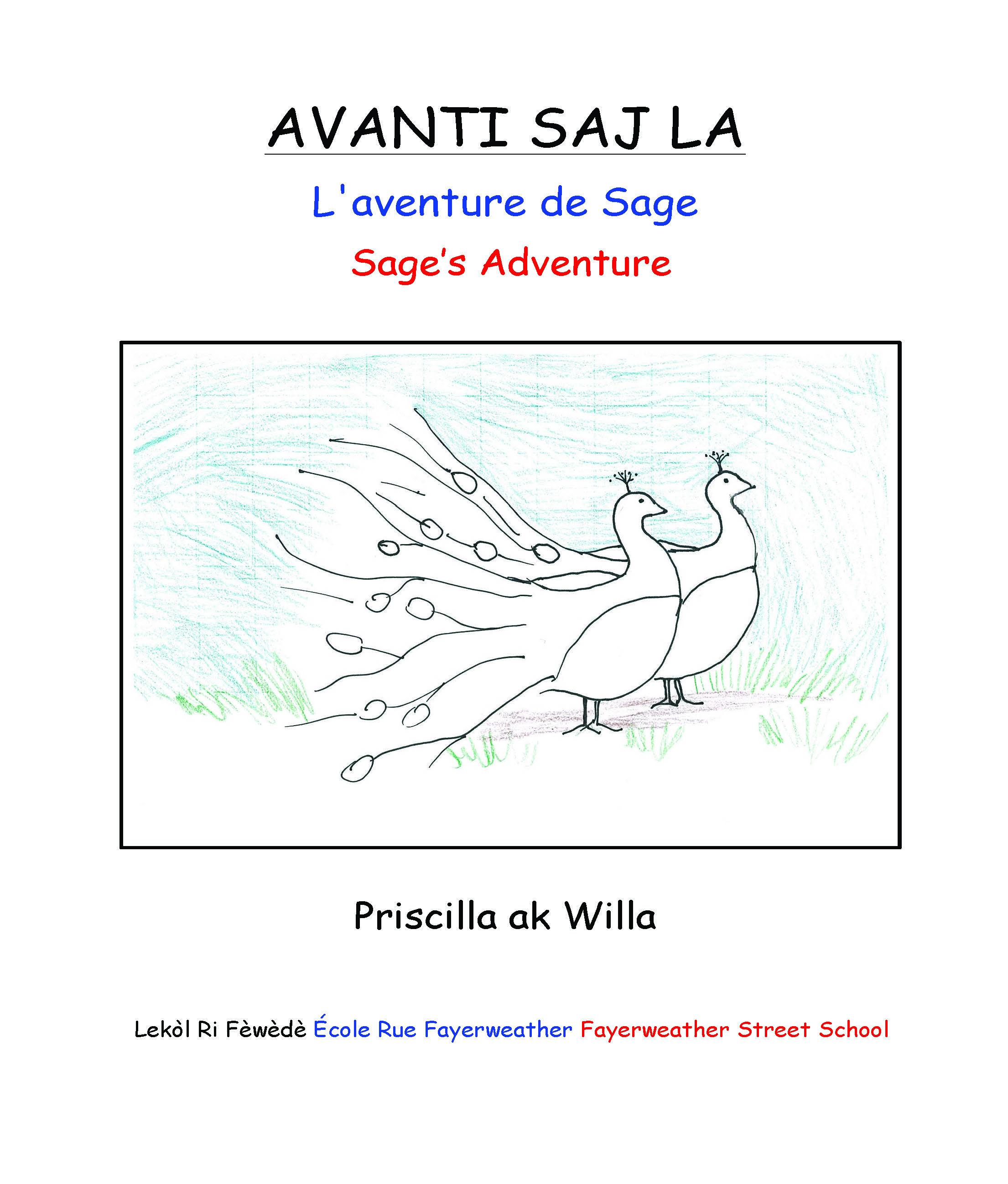 AVANTI SAJ LA / Sage's Adventur