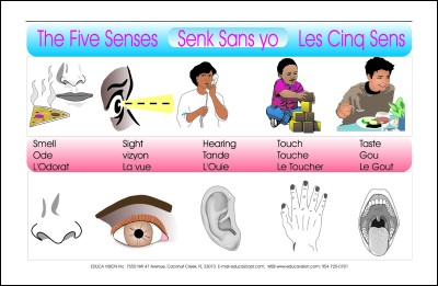 Five Senses in English, Haitian Creole & French